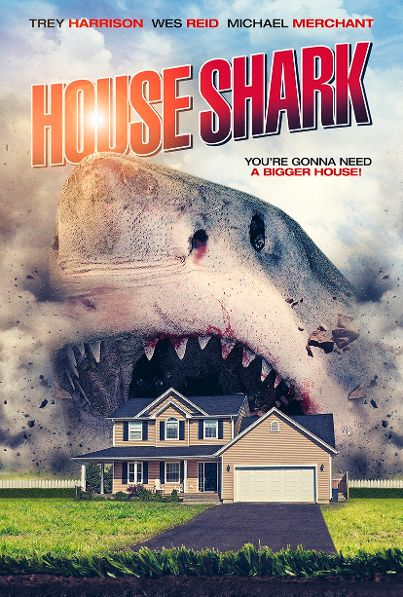 Are You Ready to Check Out 'House Shark?!'